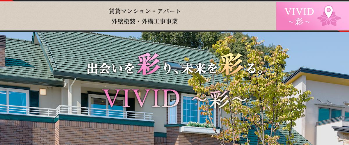 VIVID-彩-